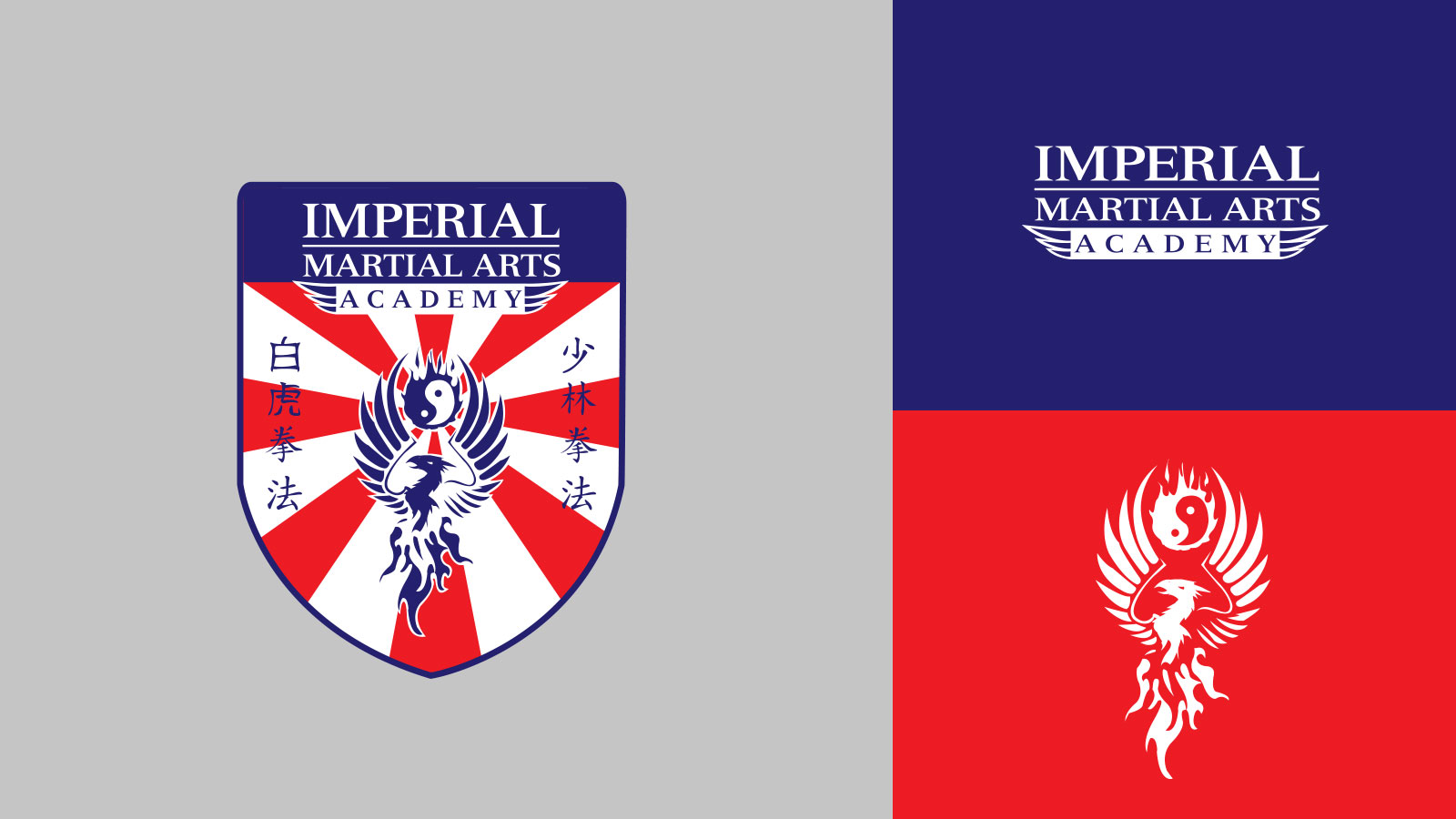 Imperial-Martial-Arts-Academy-Brand-Graphicsbyte
