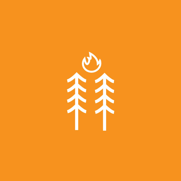 Forest Fire Icon for Everdrone