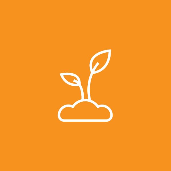 Reforestation icon for Everdrone