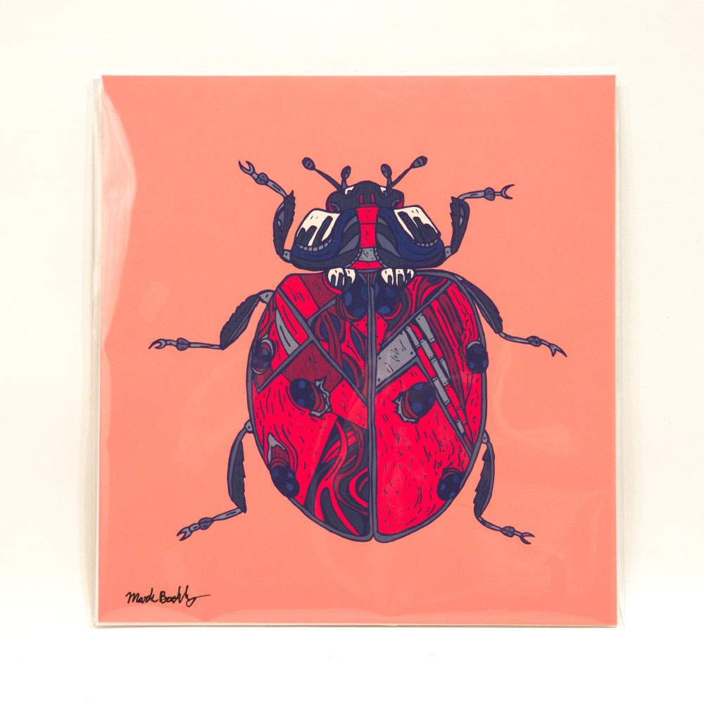 ladrissa is a ladybug illustrated by Mark Boehly