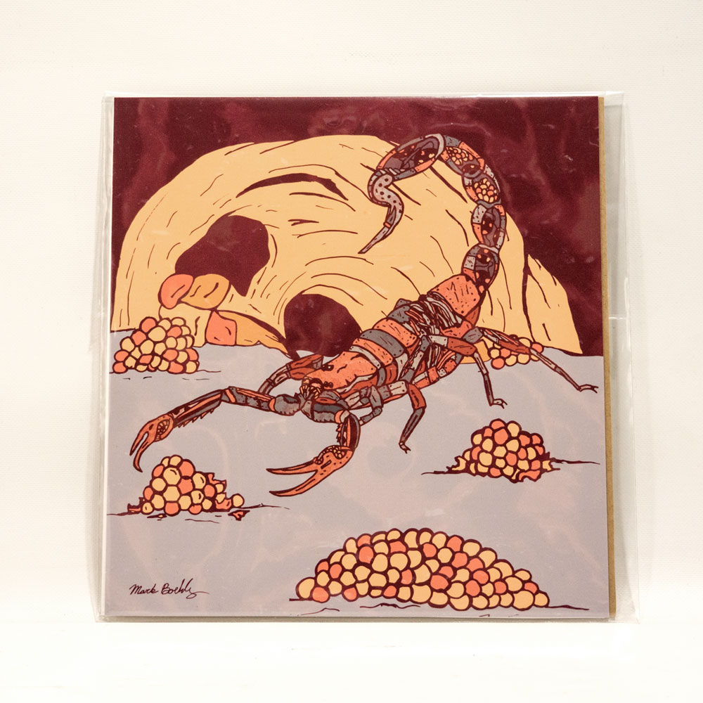 Scorpion Print by Mark Boehly